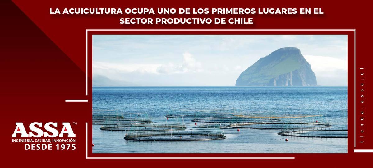 Sector Acuicola ocupa uno de los primeros lugares en el sector productivo